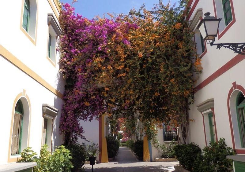 Gran Canaria Stéphanie