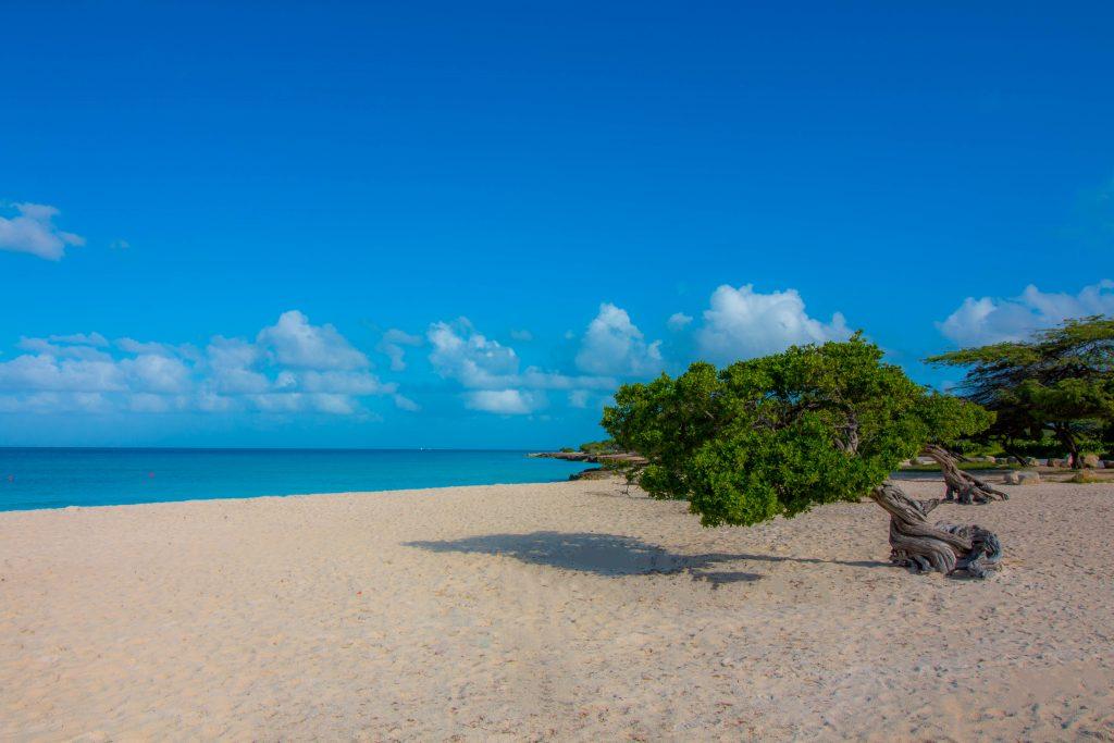 Aruba beach destination