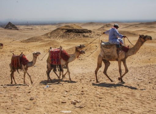 What to See in Egypt: 8 Things You Shouldn't Miss